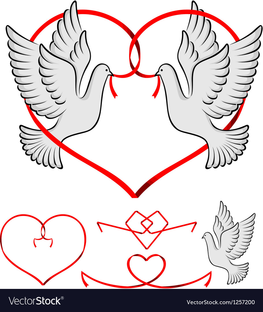 Couple of pigeon vector | Price: 1 Credit (USD $1)