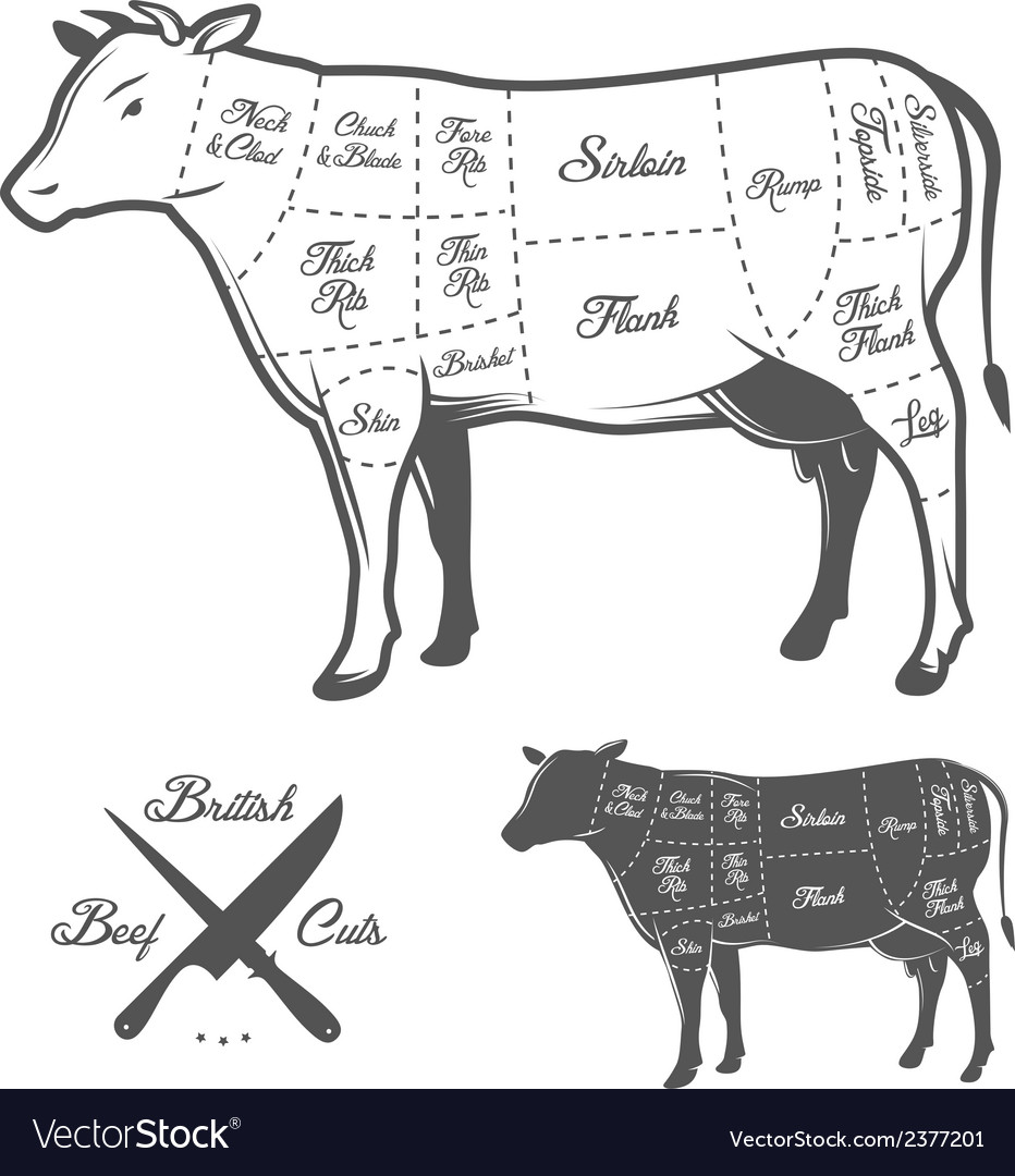 British butcher cuts of beef diagram vector | Price: 1 Credit (USD $1)