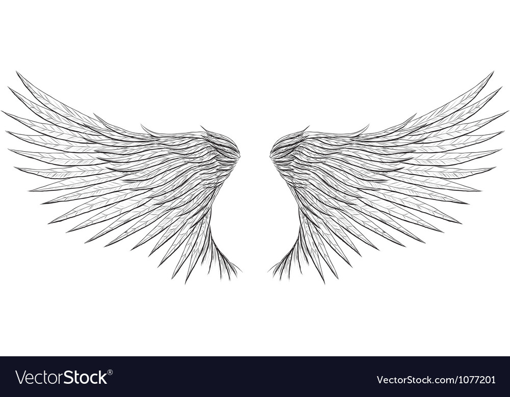 Tattoo wings vector | Price: 1 Credit (USD $1)