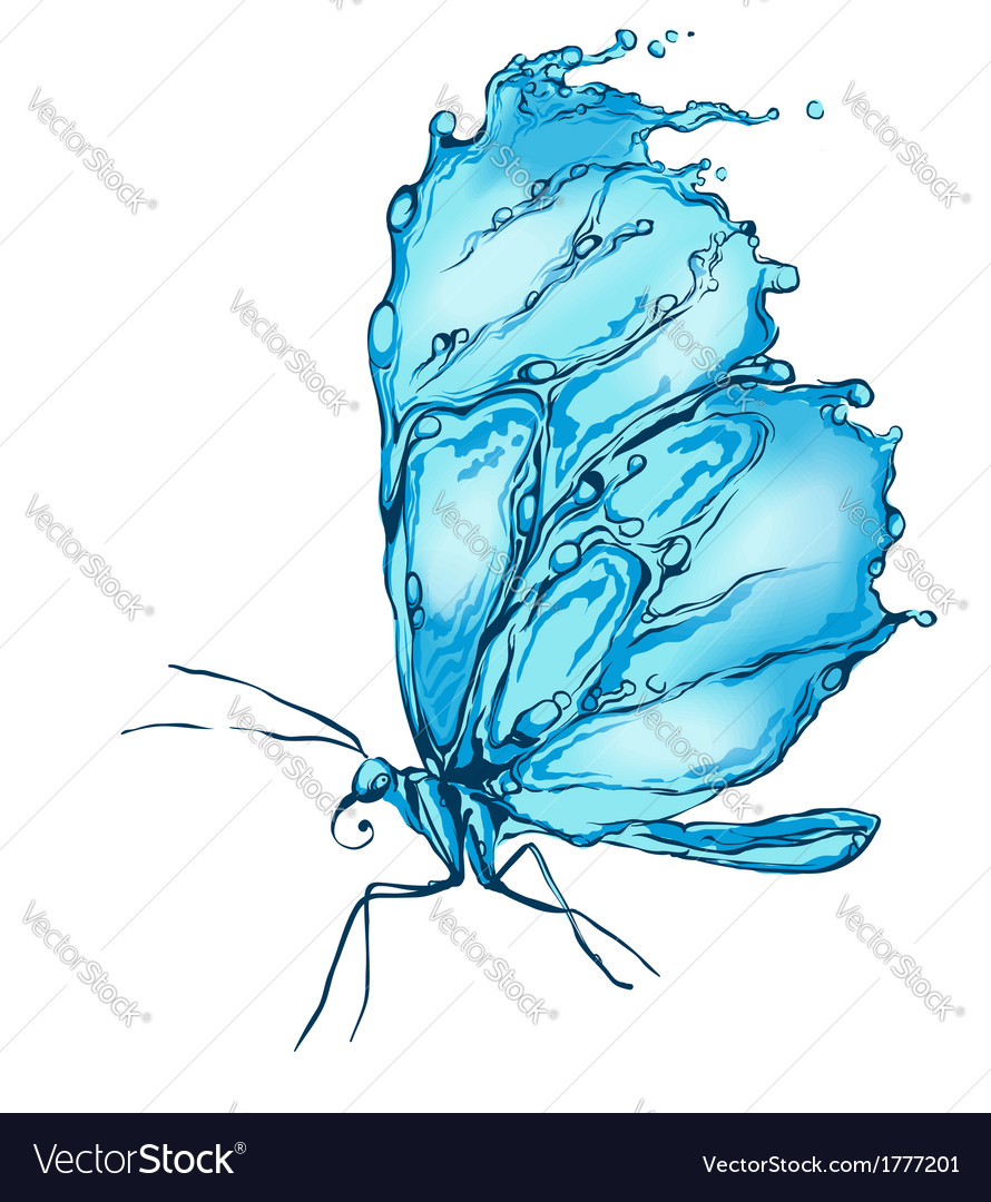 Water splash butterfly vector | Price: 1 Credit (USD $1)