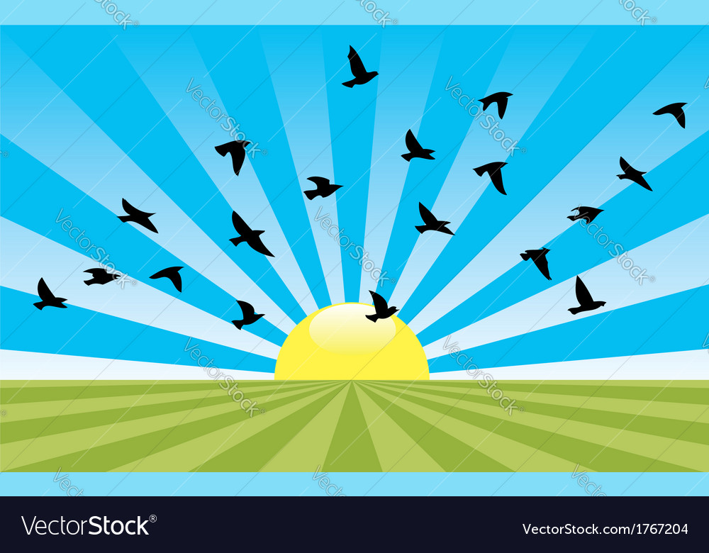 Rising sun and flying birds vector | Price: 1 Credit (USD $1)