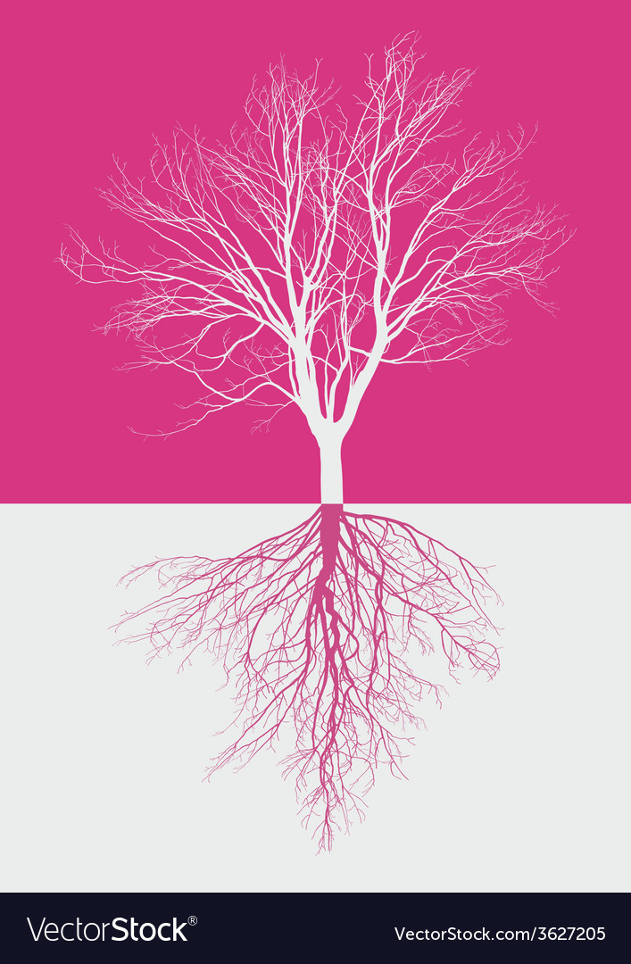 Magic bare tree with roots vector | Price: 1 Credit (USD $1)