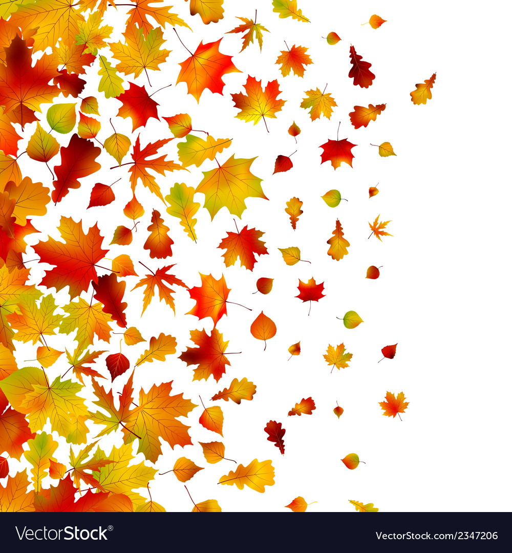 Autumn leaves background eps 8 vector | Price: 1 Credit (USD $1)