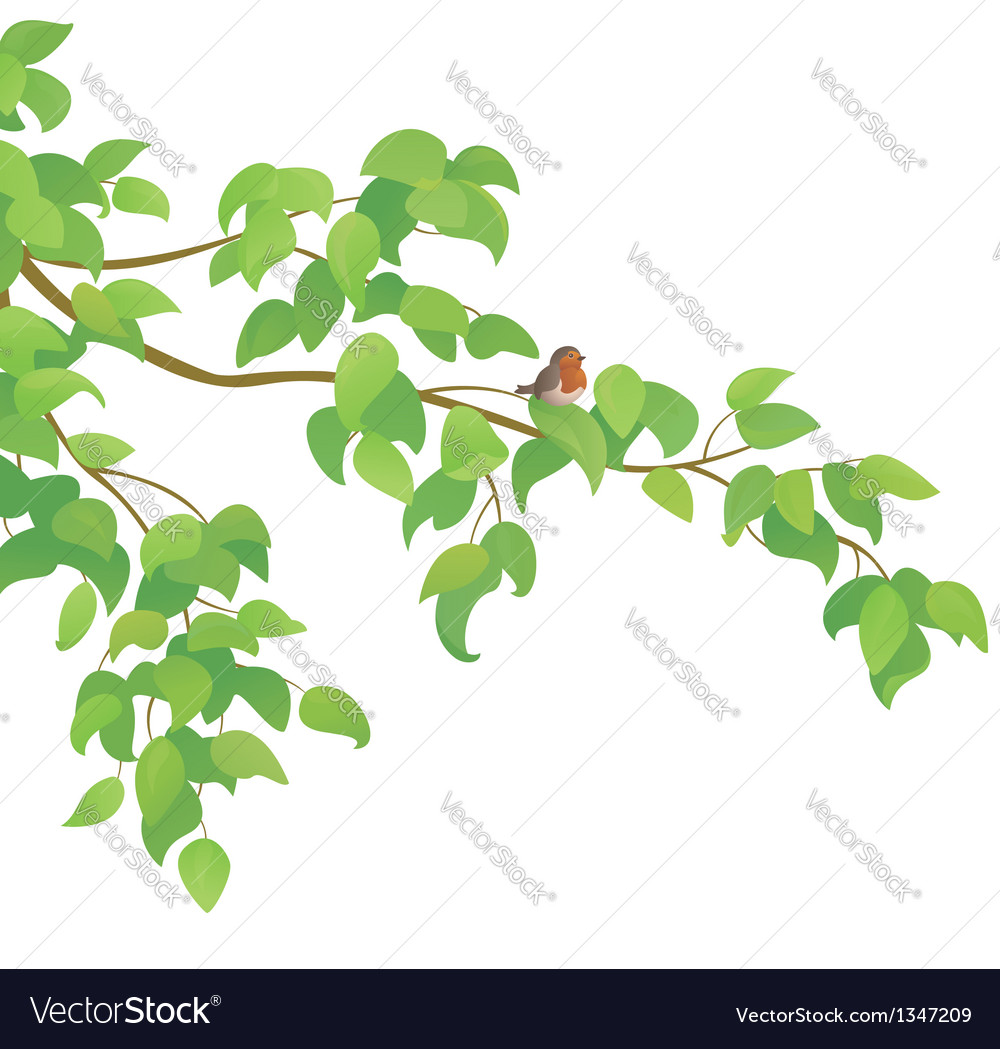 Bird and branch vector | Price: 1 Credit (USD $1)