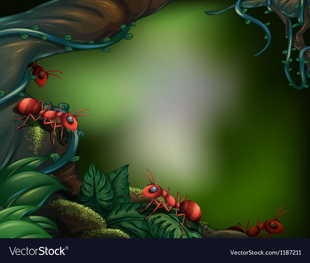 Ants at the rain forest vector | Price: 1 Credit (USD $1)