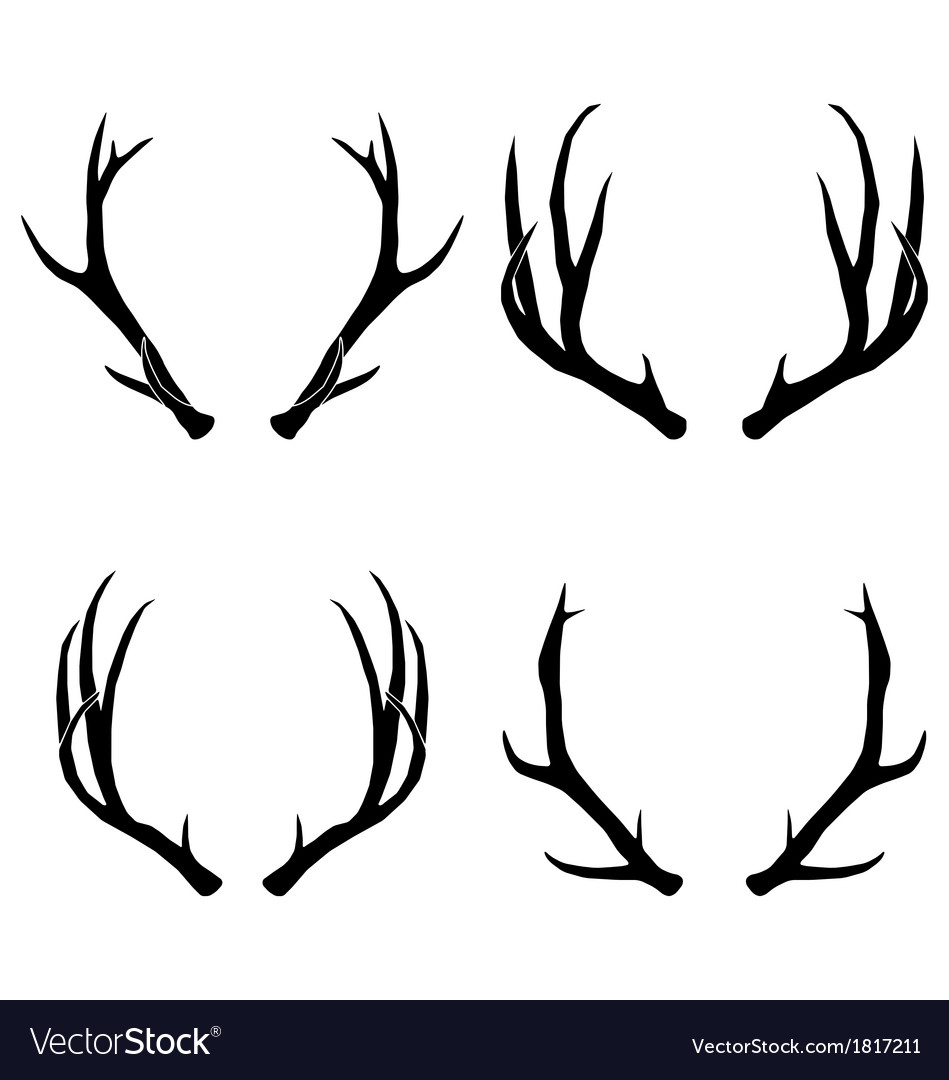 Deer antlers collection vector | Price: 1 Credit (USD $1)