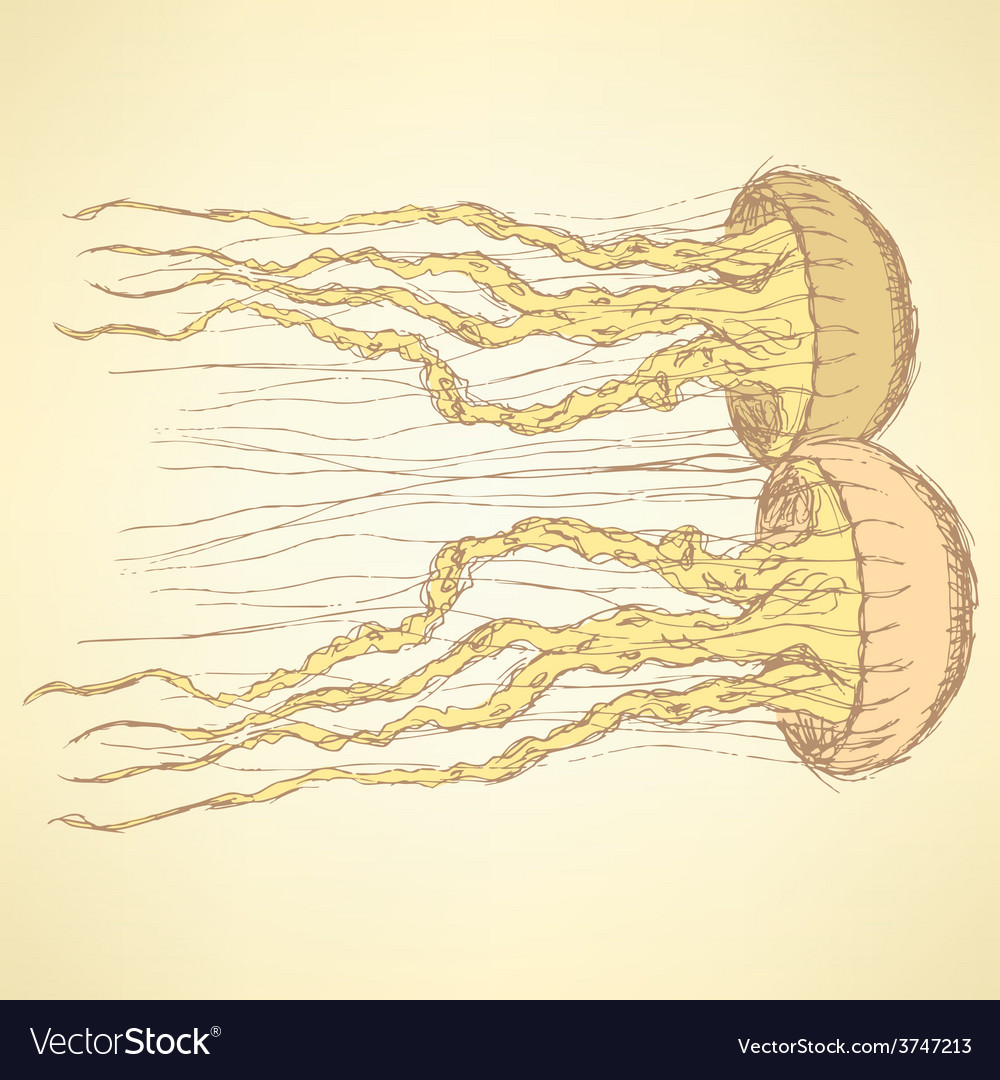 Sketch cute jellyfish in vintage style vector | Price: 1 Credit (USD $1)