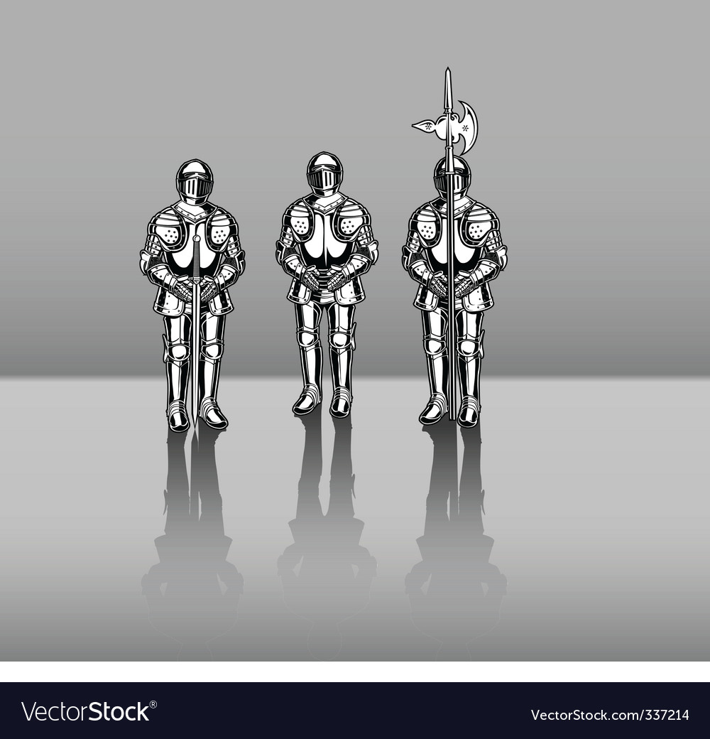 Knights in armor vector