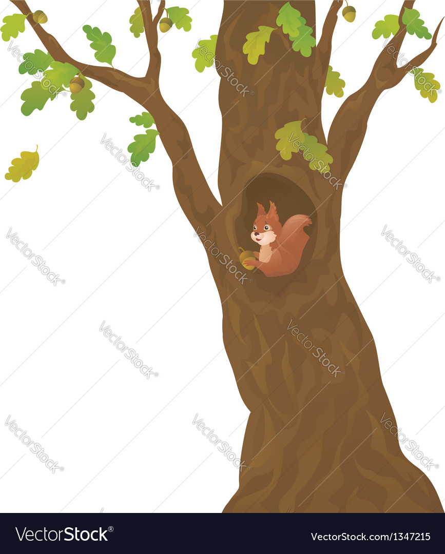 Cartoon oak and squirrel vector | Price: 1 Credit (USD $1)