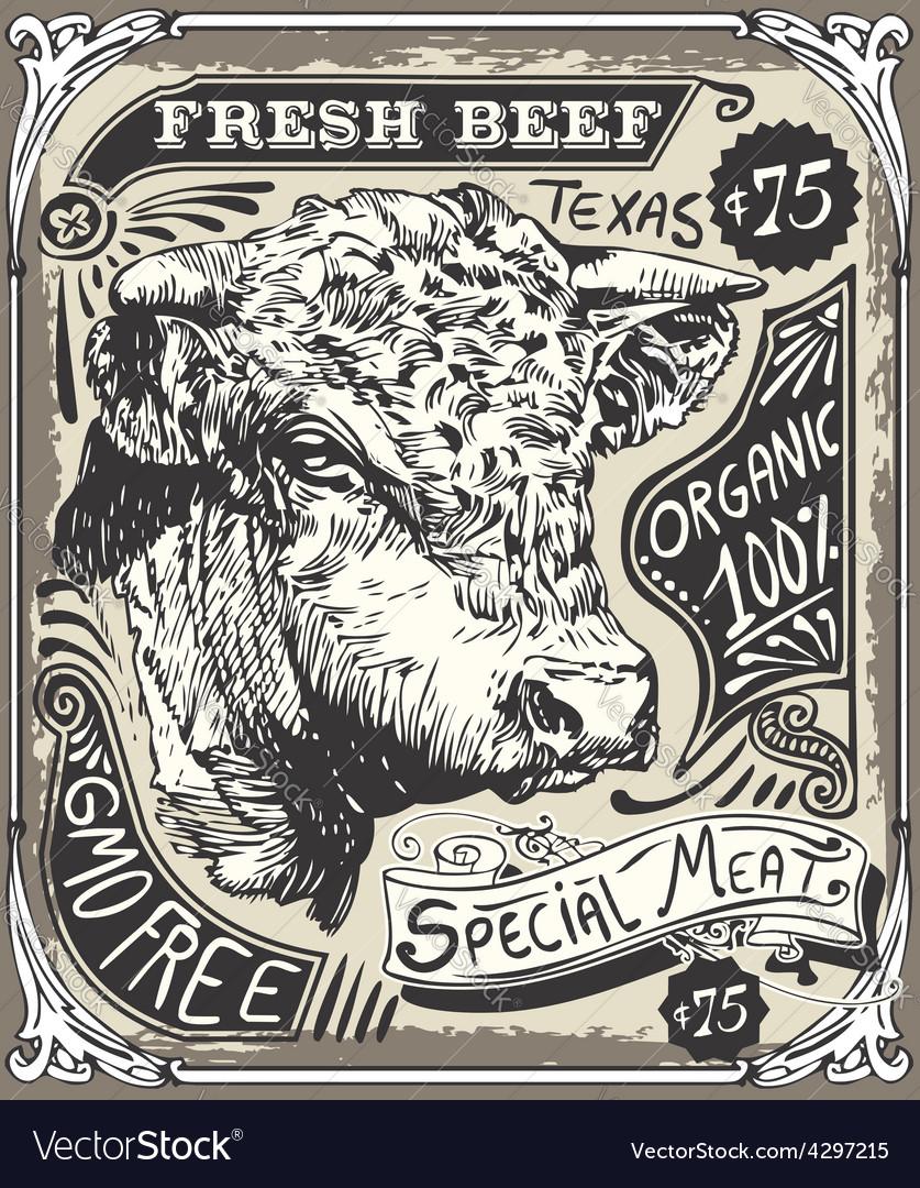 Vintage beef advertising page vector | Price: 3 Credit (USD $3)