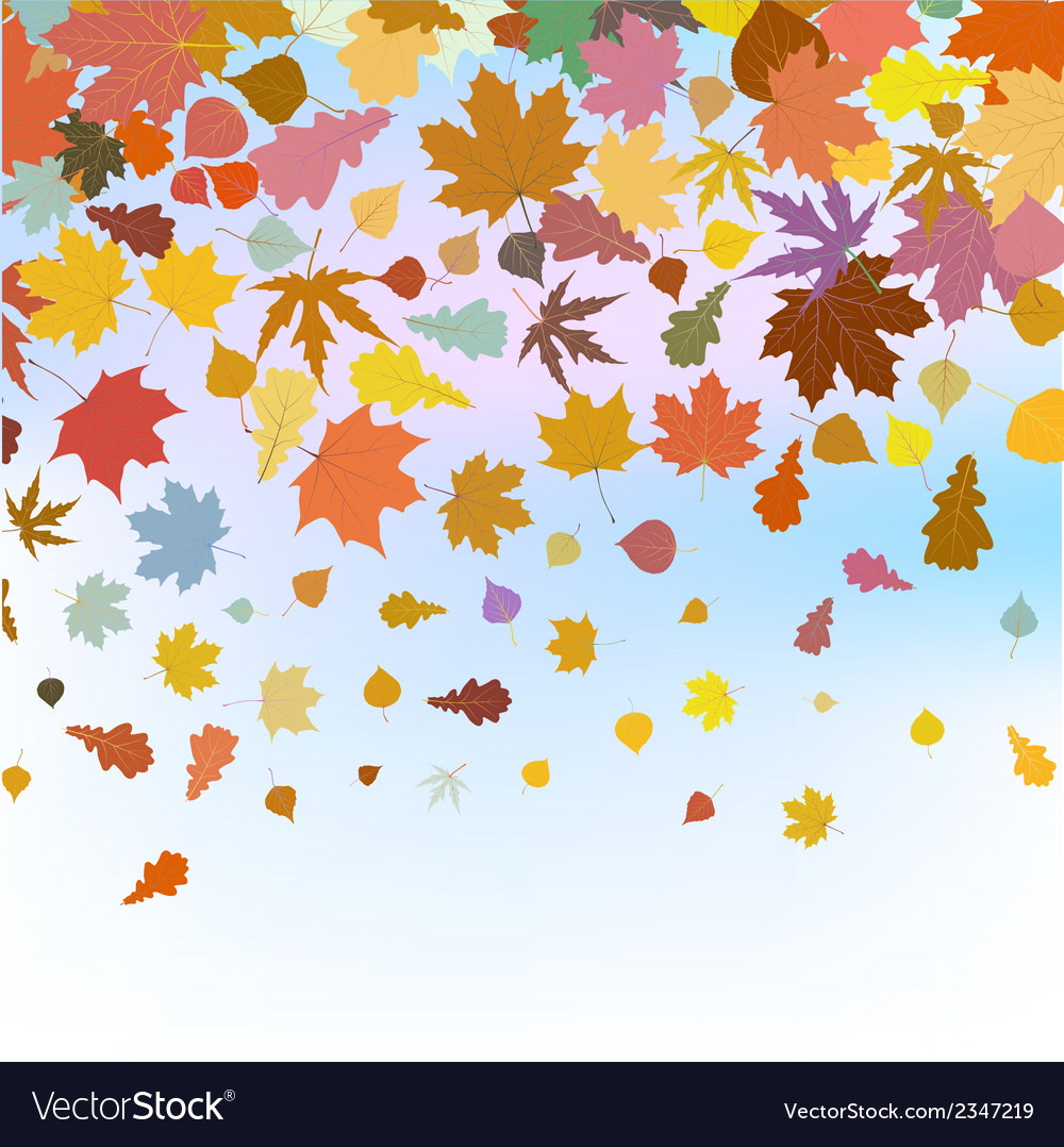 Beautiful autum leaves against sky eps 8 vector | Price: 1 Credit (USD $1)