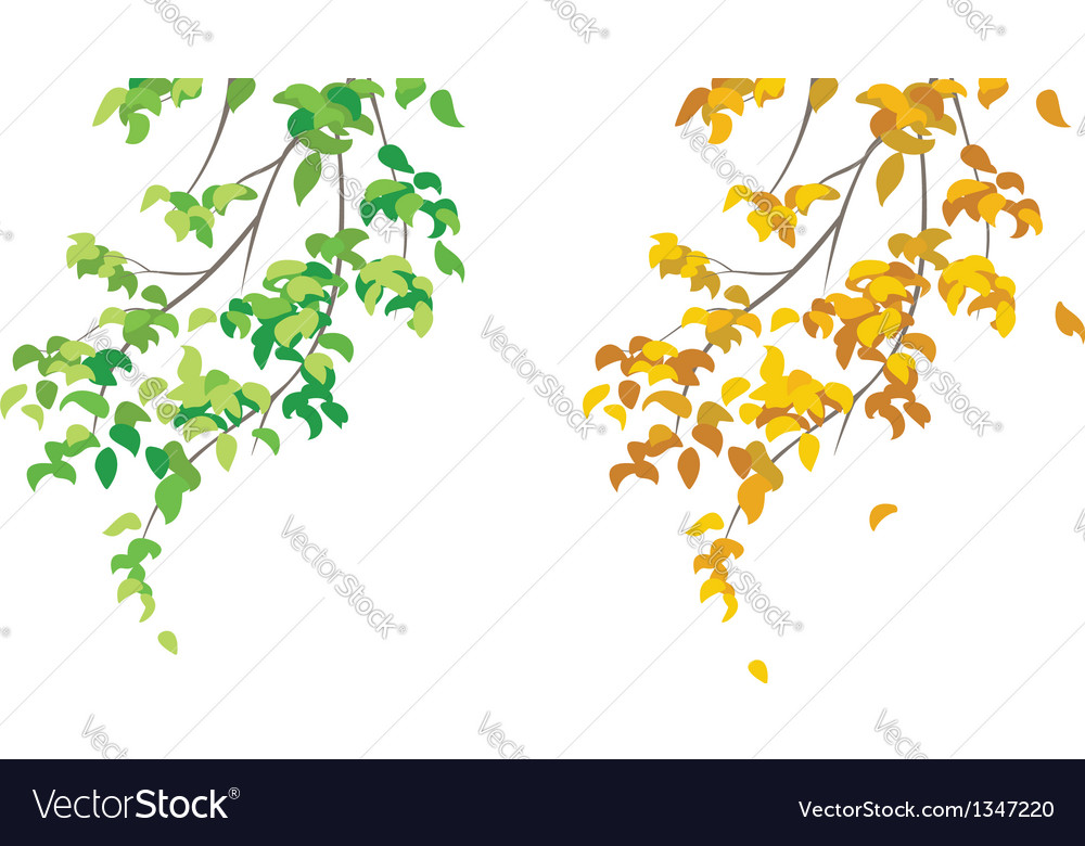 Green and yellow branches vector | Price: 1 Credit (USD $1)