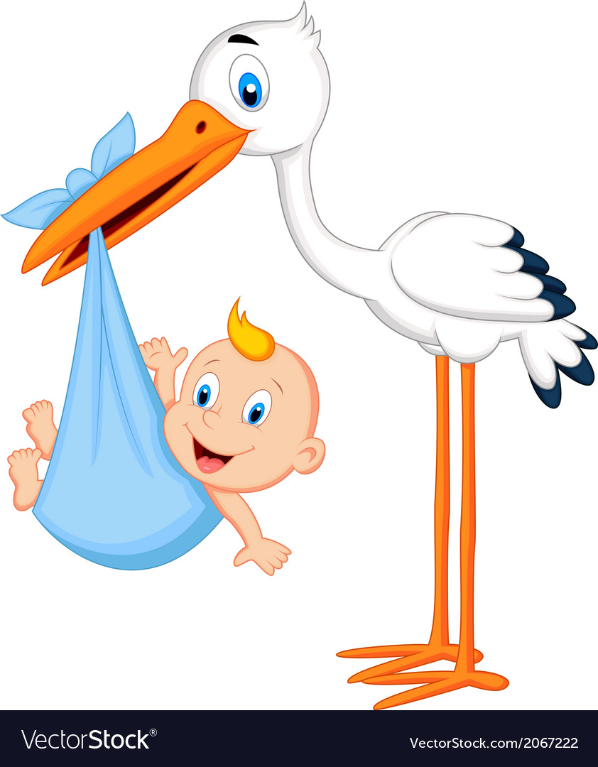 Cute cartoon stork carrying baby vector