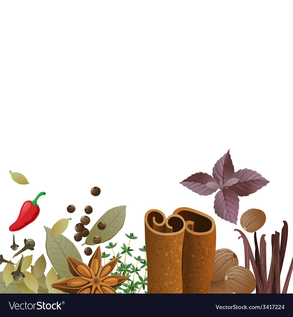 Background with spices vector | Price: 1 Credit (USD $1)
