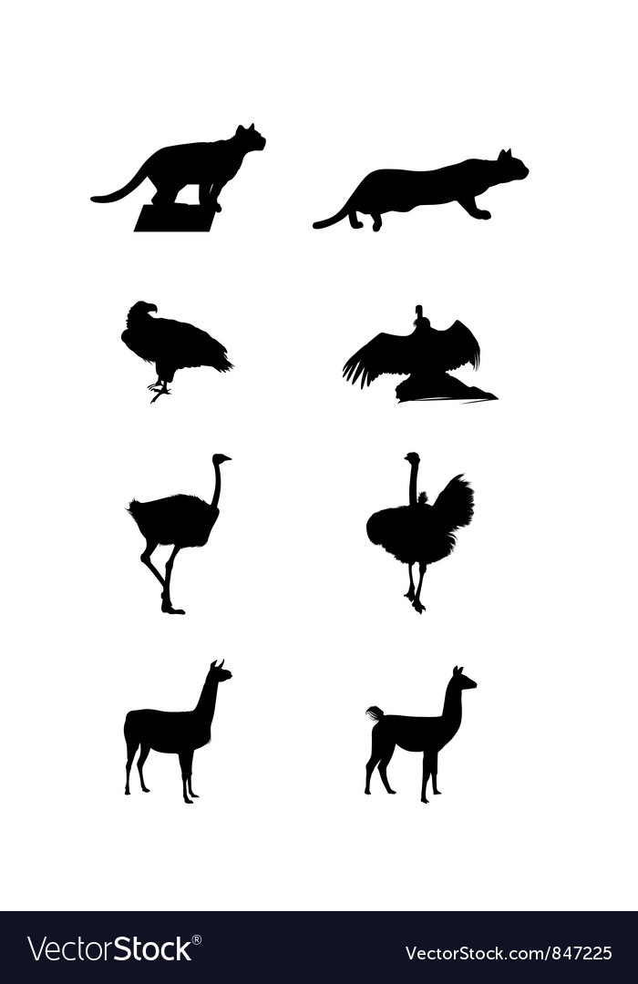 Silhouettes of a south america vector | Price: 1 Credit (USD $1)