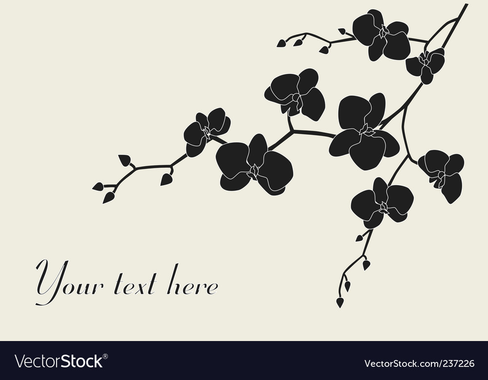 Stylized orchid branch vector | Price: 1 Credit (USD $1)