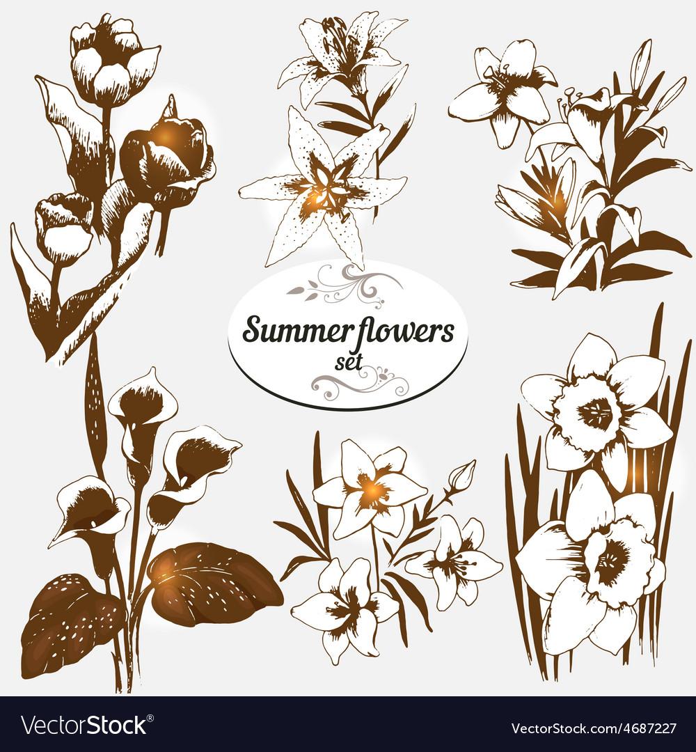Summer flowers set 2 vector | Price: 1 Credit (USD $1)