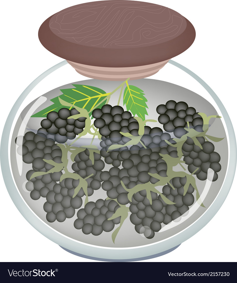 Jar of preserved blackberries or blackberry jam vector | Price: 1 Credit (USD $1)