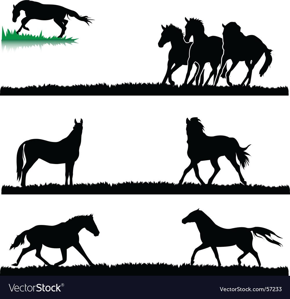 Horses vector | Price: 1 Credit (USD $1)