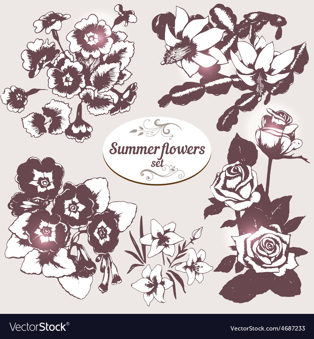 Summer flowers set 3 vector