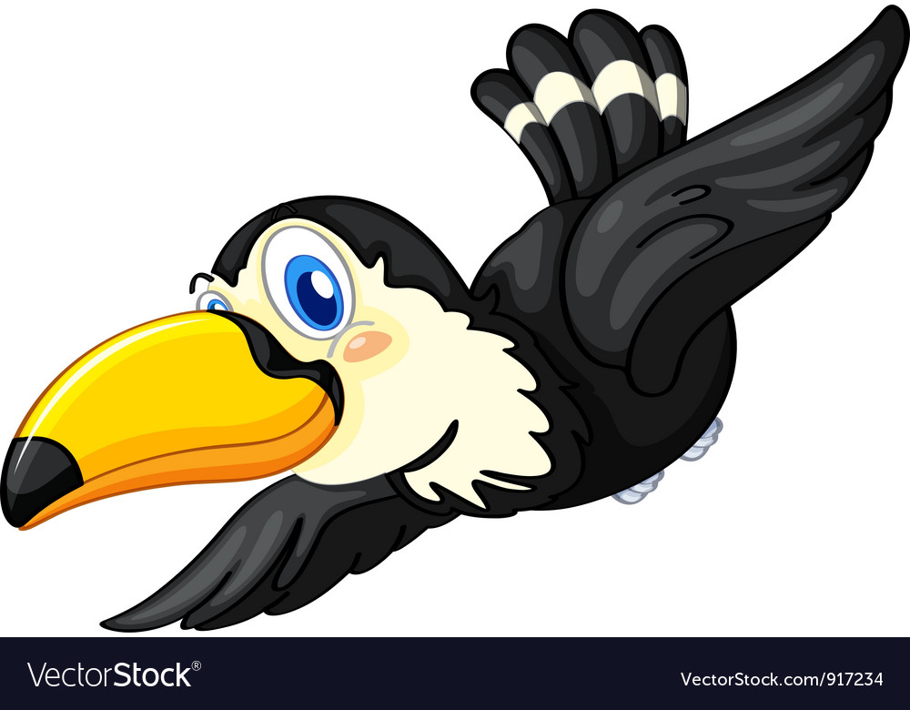 Toucan on white background vector