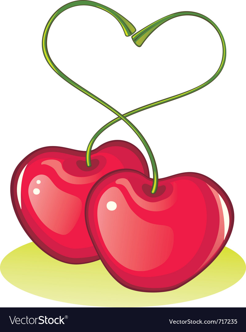 Love cherries vector