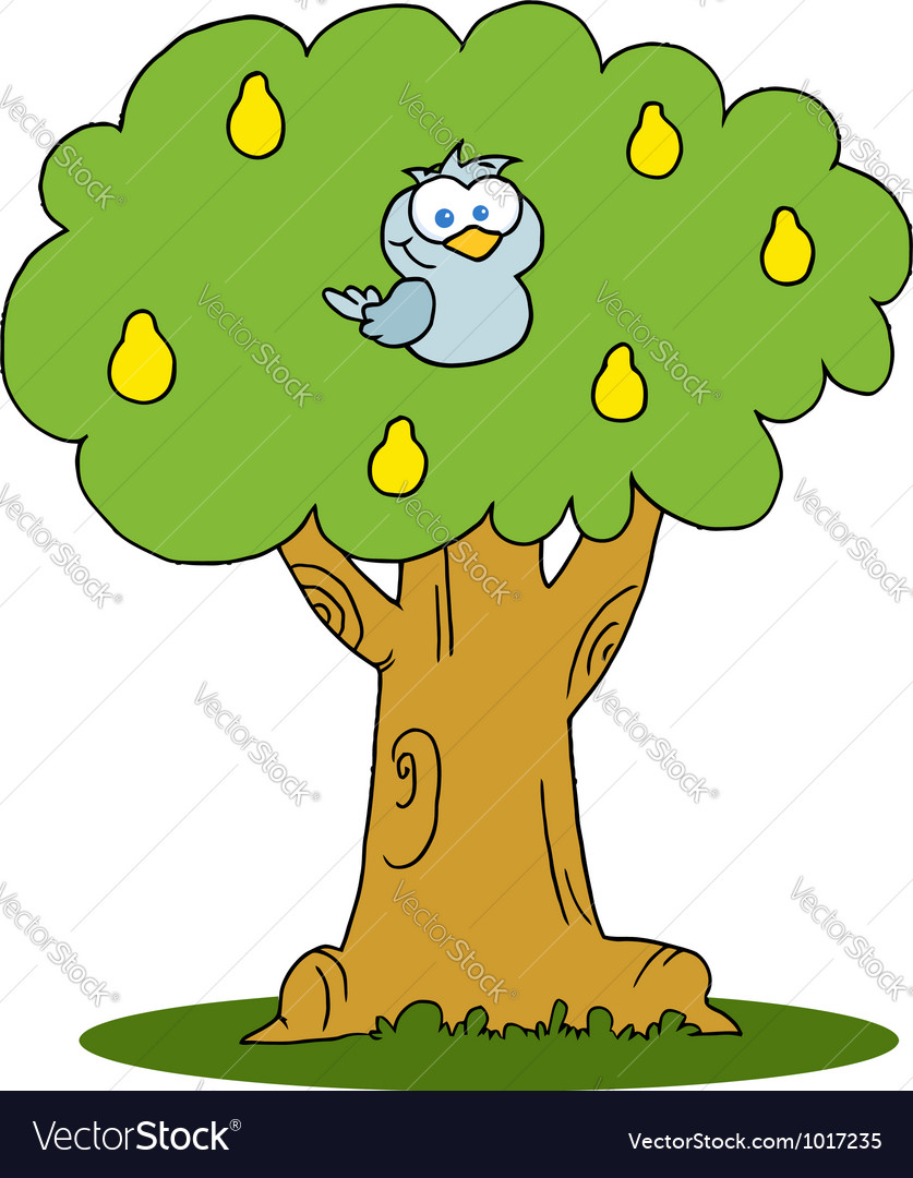 Yellow partridge in a pear tree vector   Price: 1 Credit (USD $1)