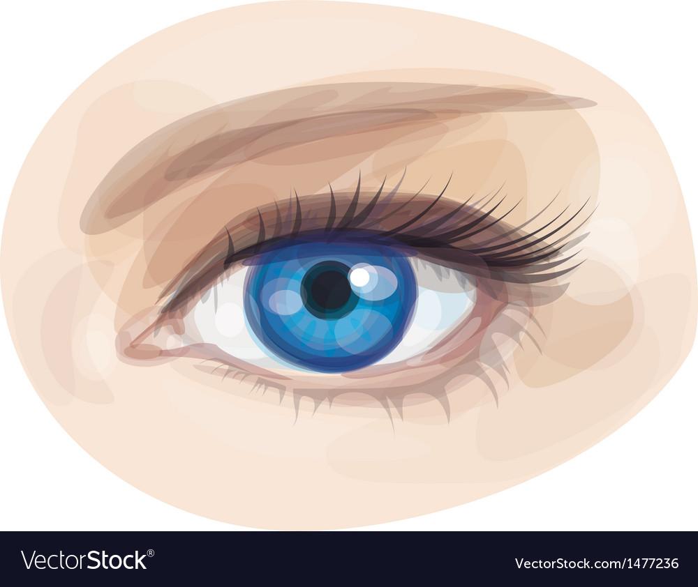 Eye blue vector | Price: 1 Credit (USD $1)