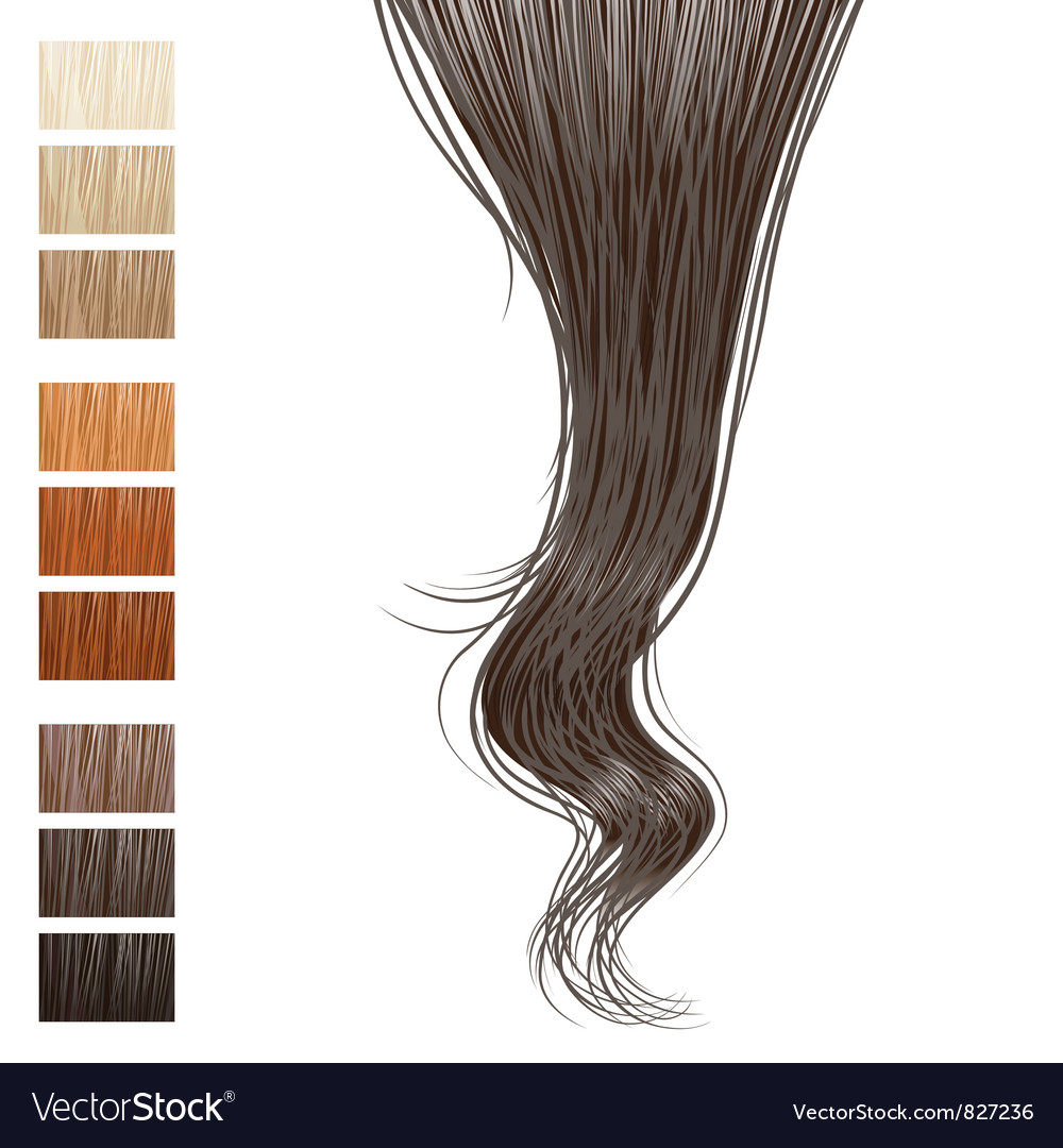 Hair vector | Price: 3 Credit (USD $3)