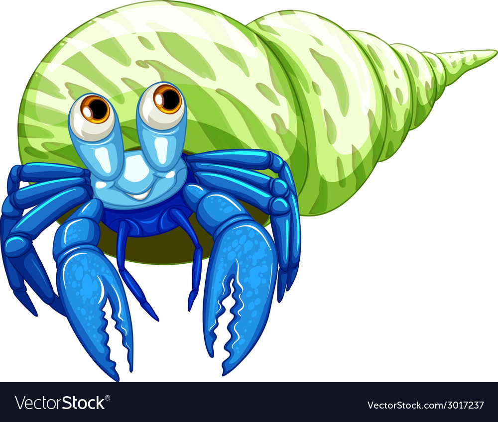 Hermit crab vector | Price: 1 Credit (USD $1)