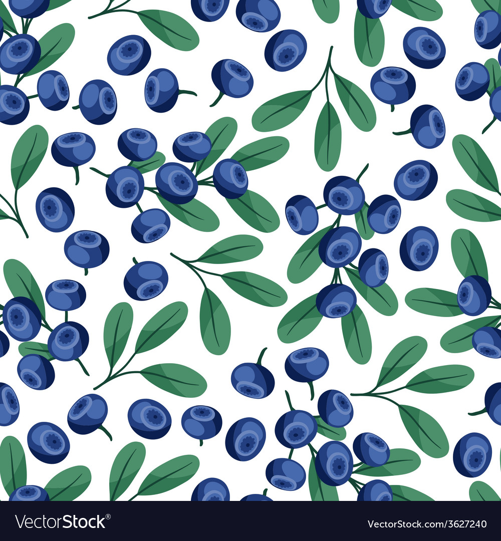 Seamless nature pattern with blueberries vector | Price: 1 Credit (USD $1)