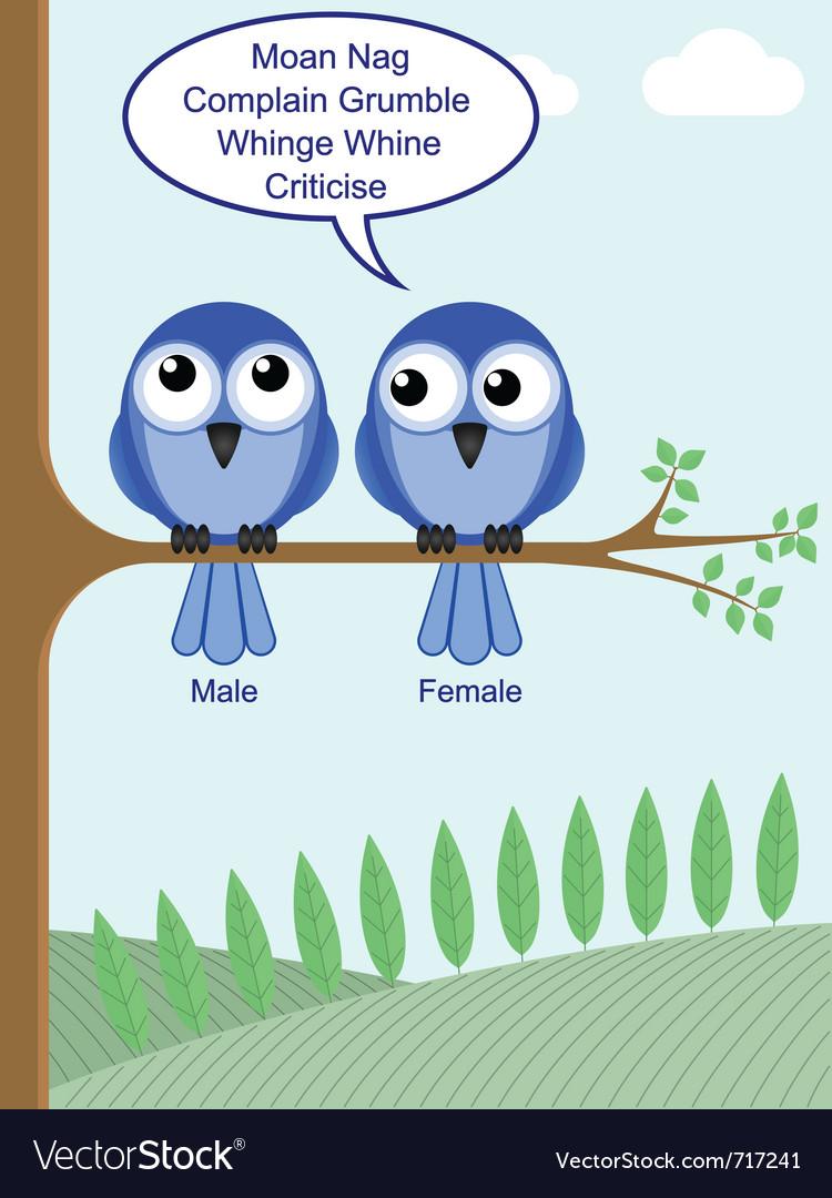 Gender of birds vector | Price: 1 Credit (USD $1)