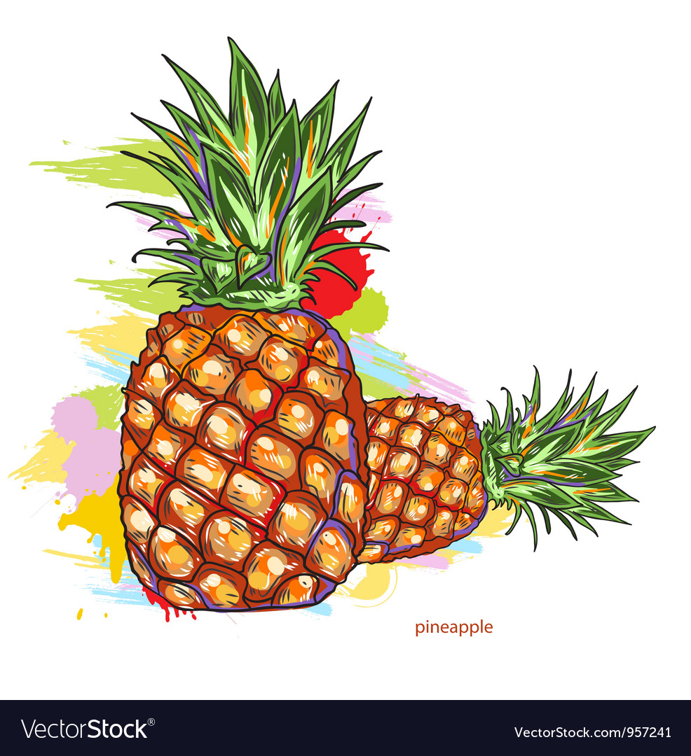 Pineapple with colorful splashes vector | Price: 1 Credit (USD $1)