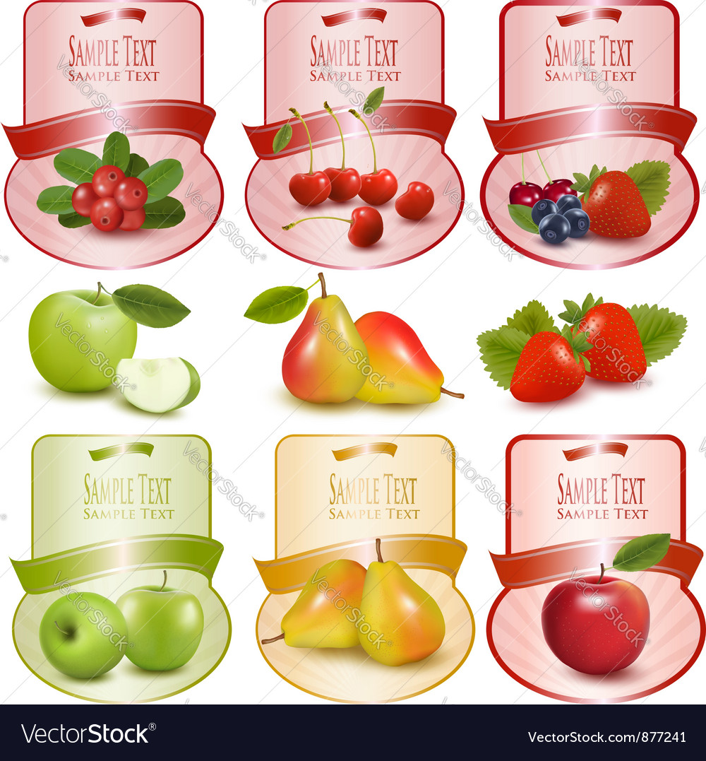 Set of labels with berries and fruit vector | Price: 3 Credit (USD $3)