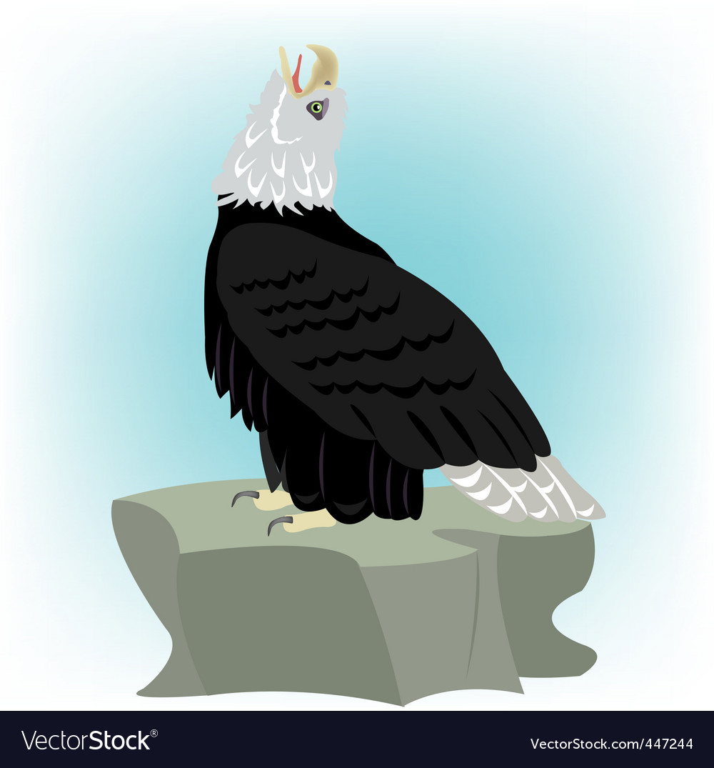 Bird eagle on stone vector | Price: 1 Credit (USD $1)