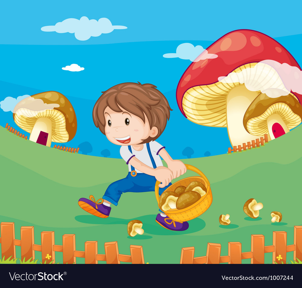 Boy picking mushrooms vector | Price: 3 Credit (USD $3)