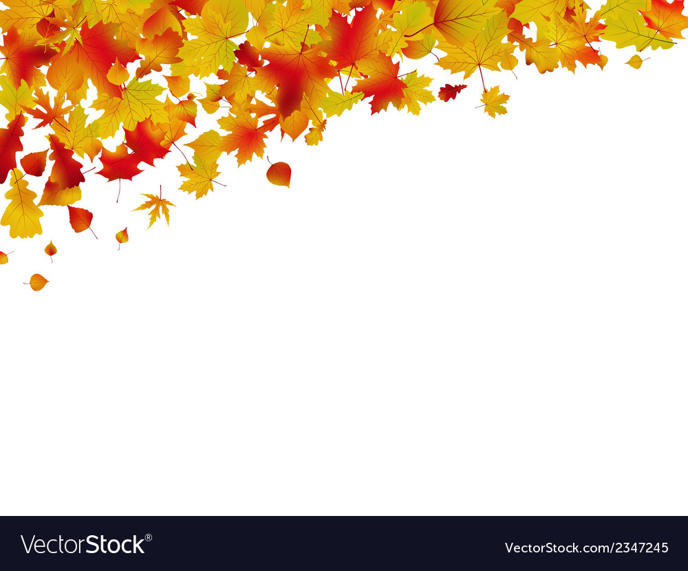 Autumn card of colored leafs eps 8 vector | Price: 1 Credit (USD $1)