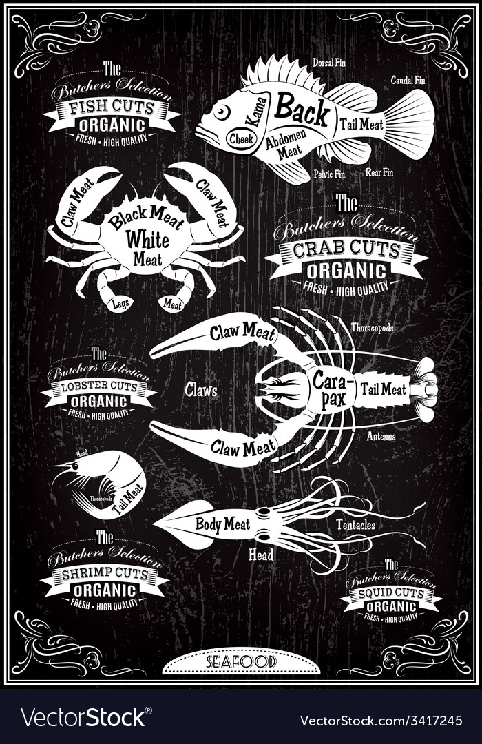 Set of diagram cut carcasses seafood vector | Price: 1 Credit (USD $1)