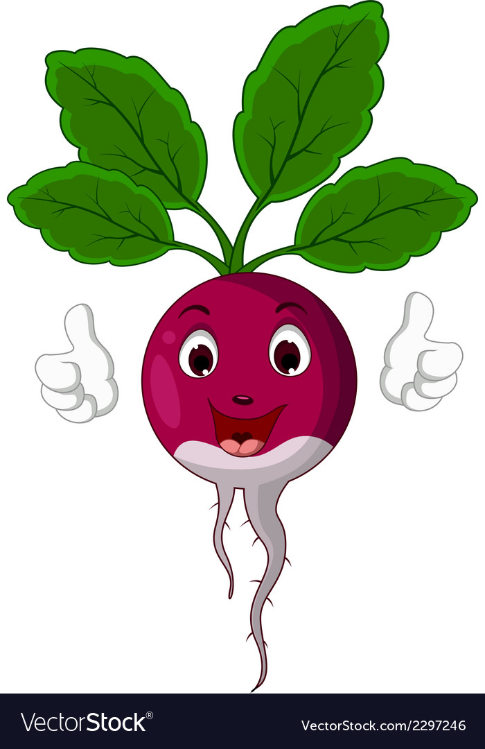 Radish cartoon thumbs up vector | Price: 1 Credit (USD $1)