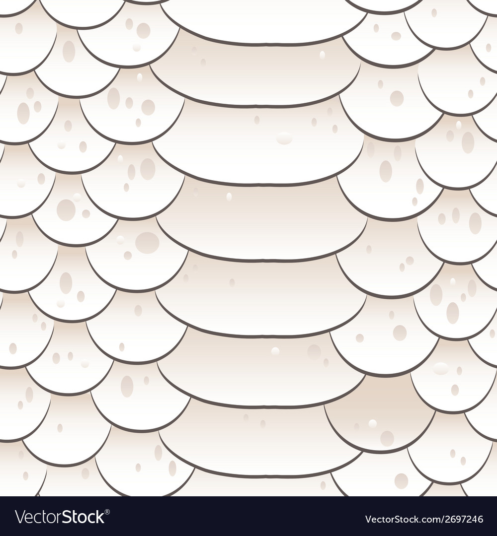 Snake skin texture seamless pattern white vector | Price: 1 Credit (USD $1)