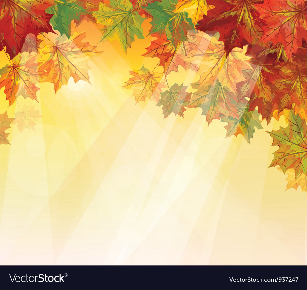 Autumnal leaves vector | Price: 1 Credit (USD $1)