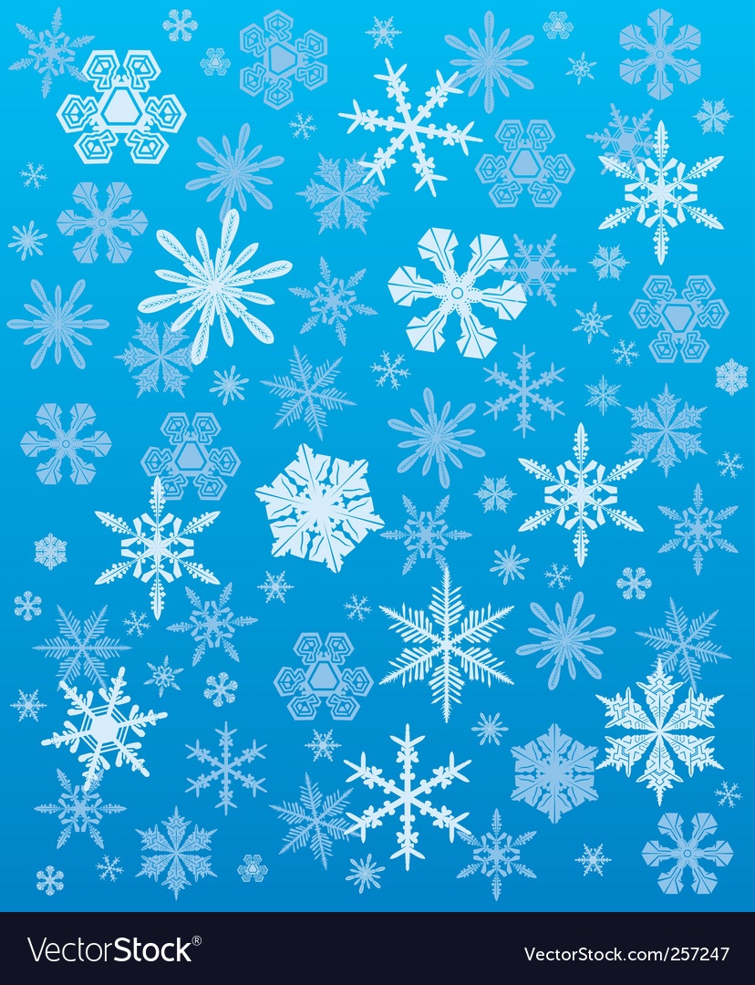 Snowflakes background winter vector | Price: 1 Credit (USD $1)