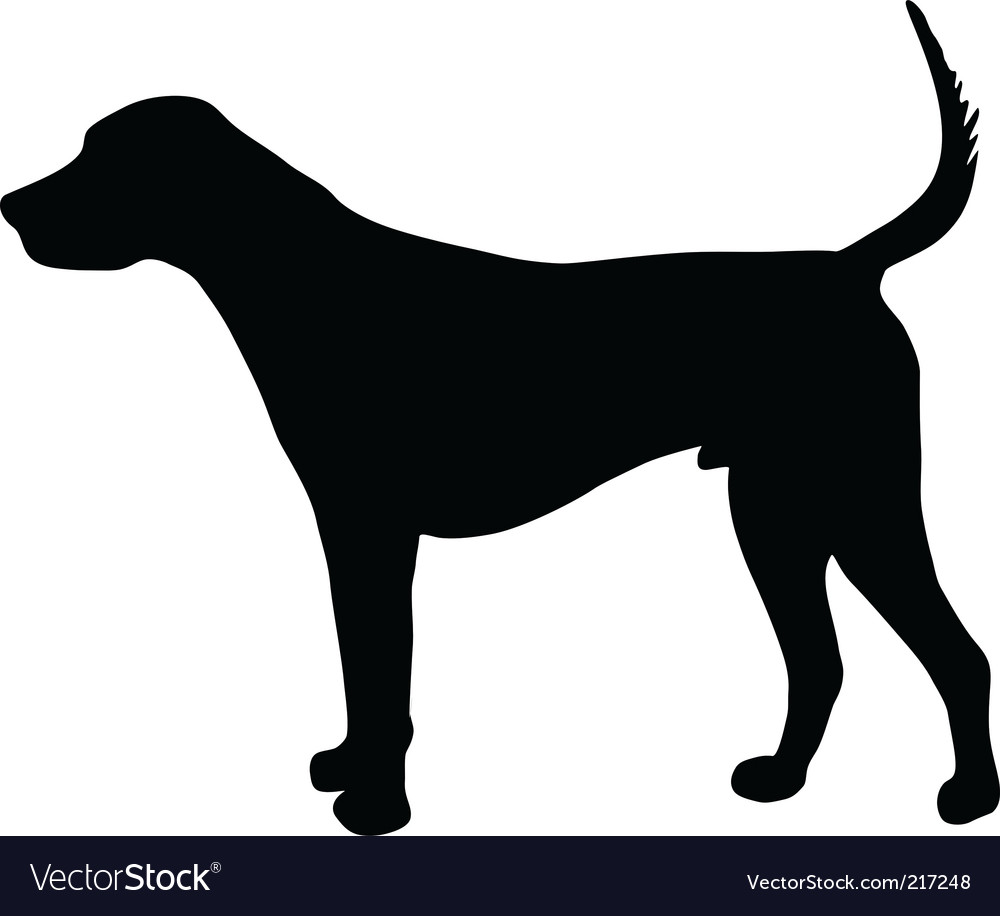 English foxhound vector | Price: 1 Credit (USD $1)