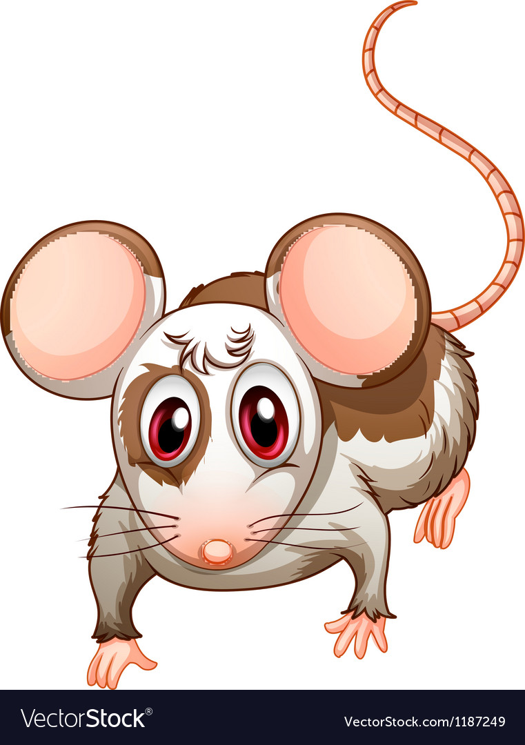 A mouse vector | Price: 1 Credit (USD $1)