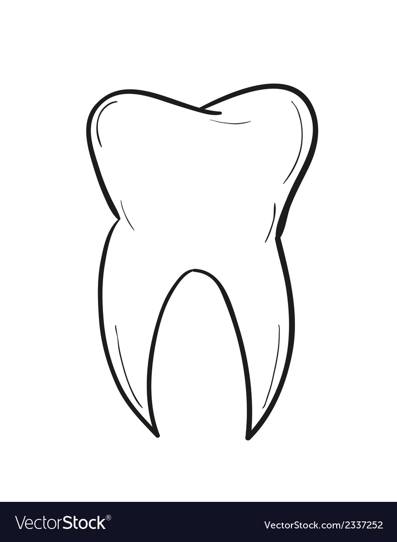 Sketch of the tooth vector | Price: 1 Credit (USD $1)