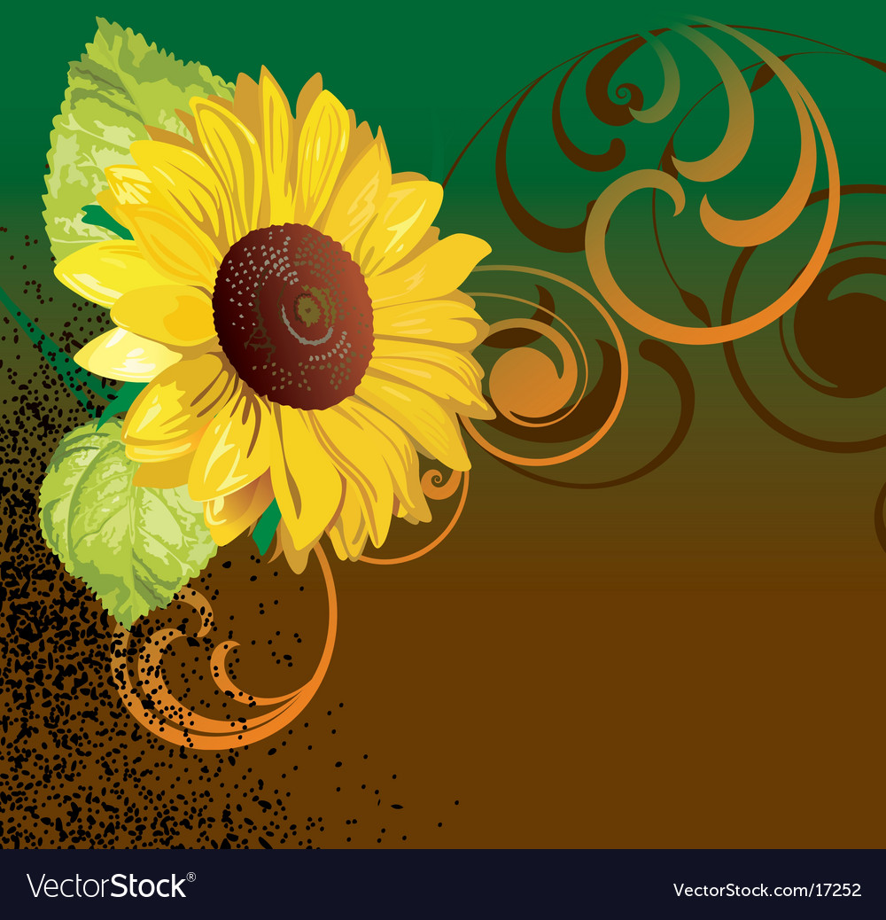 Sunflower design vector | Price: 1 Credit (USD $1)