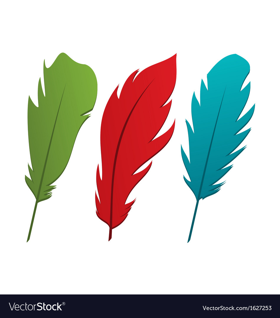 Set colorful feathers vector | Price: 1 Credit (USD $1)