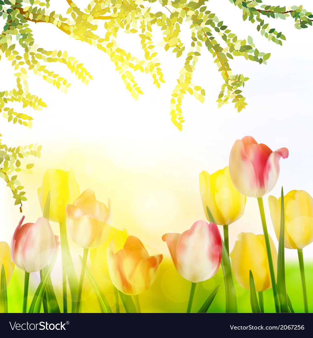 Beautiful spring flowers eps 10 vector | Price: 1 Credit (USD $1)