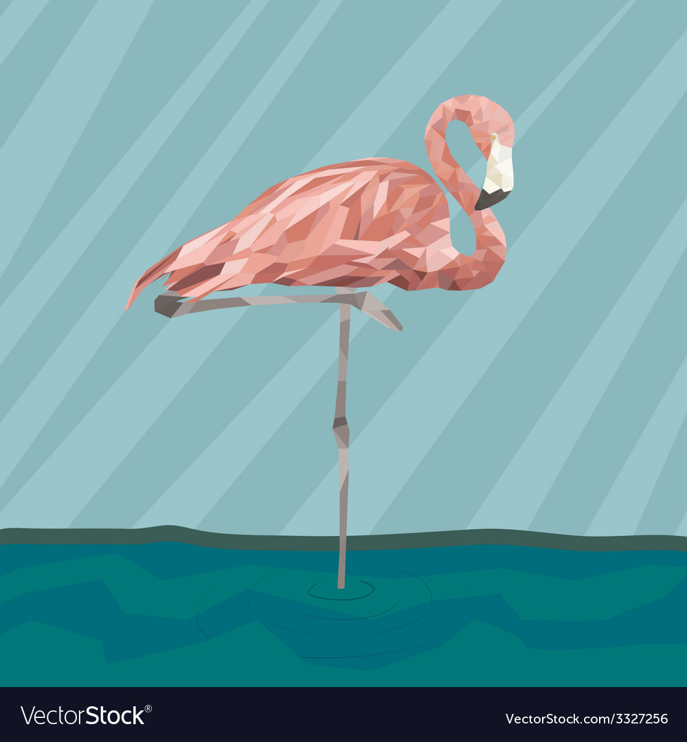 Flamingostand17 vector | Price: 1 Credit (USD $1)