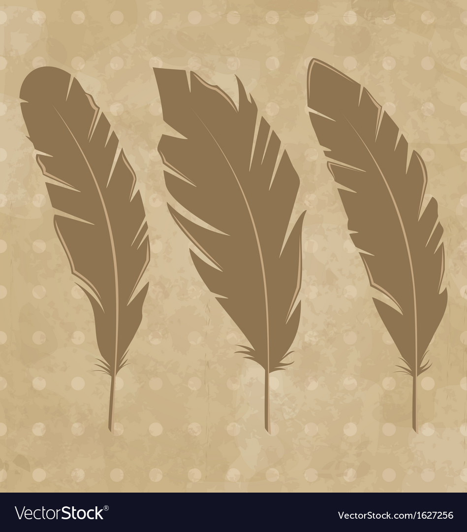 Set vintage feathers vector | Price: 1 Credit (USD $1)